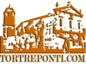 tortreponti-logo-bucato