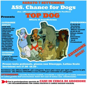 top dog latina scalo