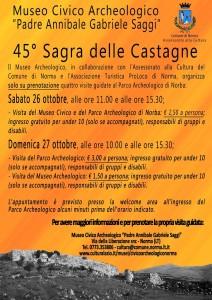 Sagra delle castagne 2013 (2)